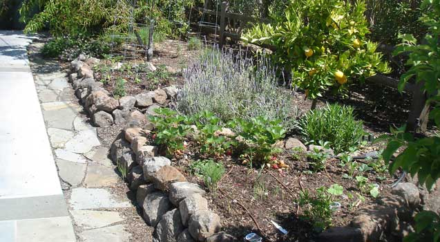 Landscape Design: Retaining Wall, Seating Benches
